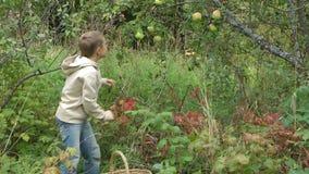 Pojke med äpplen. lager videofilmer
