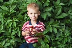 Pojke med berrys Arkivbild