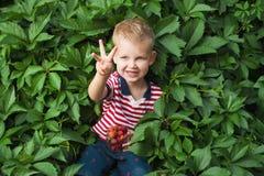 Pojke med berrys Arkivfoto