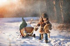 Pojke med en julgran i vinterskogen royaltyfri foto