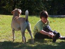 Pojke med hunden Royaltyfria Foton