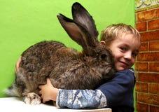 Pojke med kanin Arkivfoto