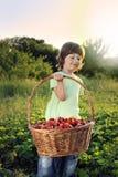 Pojke med korgen av jordgubben Arkivbilder