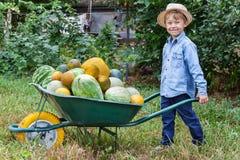 Pojke med skottkärran i trädgård Royaltyfria Bilder
