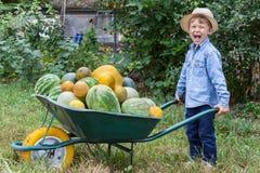 Pojke med skottkärran i trädgård Royaltyfri Foto