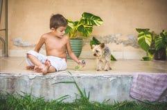 Pojke med Yorkshiren utomhus- Terrier Fotografering för Bildbyråer