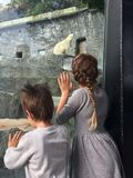 Pojke och flicka i zoo Arkivfoton