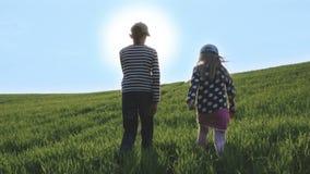 Pojke och flicka som går i strålarna av den ljusa solen på en grön äng lager videofilmer