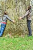 Pojke och flicka som kramar det gamla trädet Royaltyfri Foto