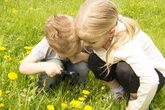 Pojke och flicka som ser till och med ett förstoringsglas Arkivbild