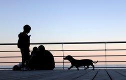 Pojke och hund på bakgrunden av havssolnedgången Fotografering för Bildbyråer