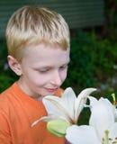 Pojke och lilja Royaltyfri Bild