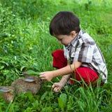 Pojke och lilla kaniner i trädgården Royaltyfri Bild