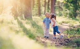 Pojke och pojke som kysser i skogen Arkivbild