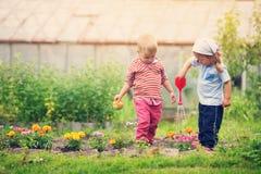 Pojke och pojke som spelar i trädgården Arkivbilder