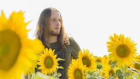 Pojke på solrosfältet Arkivbild