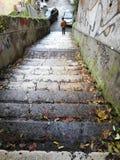 Pojke på trappan arkivbild