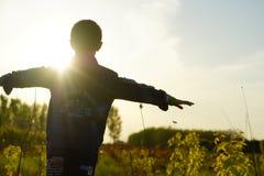 Pojke panelljus, solnedgångar, diagram arkivbilder
