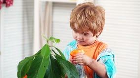 Pojke som besprutar blommor i en kruka Vårbegrepp, natur och omsorg Gullig barnpojkeomsorg för växter Växtblommor växa lager videofilmer