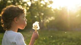Pojke som blåser på härligt solnedgångljus för maskros