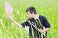 Pojke som fångar fjärilar i ängen Arkivfoton