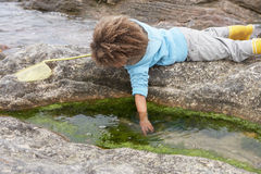pojke som fiskar lyckligt netto Royaltyfria Bilder