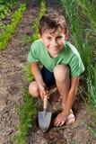 Pojke som fungerar i trädgården Arkivbilder