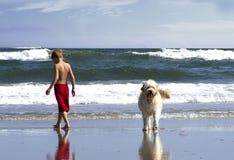 Pojke som går hunden på havet Arkivbild
