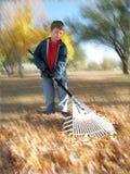 pojke som gör arbetsgårdbarn Royaltyfri Fotografi