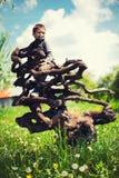 Pojke som klättras i träd Royaltyfri Bild