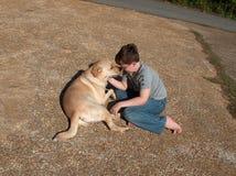 Pojke som leker med hunden Royaltyfria Foton