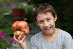 Pojke som rymmer stora tomater Arkivfoto