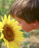 pojke som ser solrosen Arkivbilder