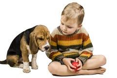 Pojke som utbildar hunden Royaltyfri Foto