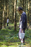 Pojke som väljer wild champinjoner Arkivfoton