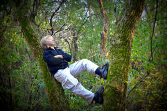 Pojke som vilar i träd Royaltyfri Foto