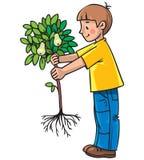 Pojke trädgårdsmästaren med ett träd Arkivfoto