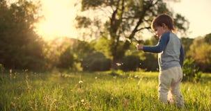 Pojkeanseende med en fotbollboll i sommaren som kör på fältet med bakre sikt för gräs arkivfilmer