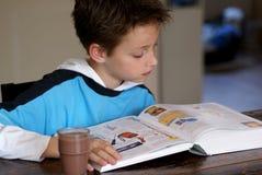 pojkeavläsning royaltyfri bild