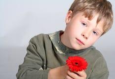 pojkeblommaholding royaltyfria bilder