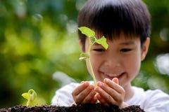 Pojkehållplanta Royaltyfri Bild