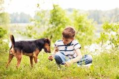 pojkehund Royaltyfri Bild