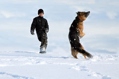 pojkehund Royaltyfria Foton
