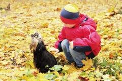 pojkehund Royaltyfria Bilder