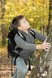 Pojkeklättring upp på tree Arkivbilder
