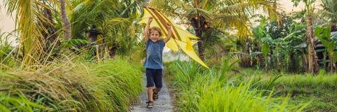 Pojkelansering en drake i en risfält i Ubud, BANER för Bali ö, Indonesien, LÅNGT FORMAT royaltyfria bilder