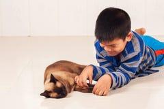 Pojkelek med den bruna katten Royaltyfri Foto