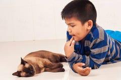 Pojkelek med den bruna katten Arkivfoto