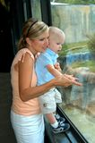 pojkemomen besök zooen Royaltyfria Foton