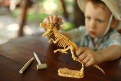 Pojken önskar att vara en arkeolog Arkivfoton